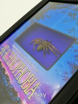 Arachnophobia Spider Bob Used Movie Prop Display Horror Coa