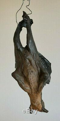 BATMAN BEGINS Movie Prop Bat with COA