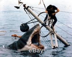 Jaws Movie Prop Screen Used Original Orca Piece 1975 Authentic Rare