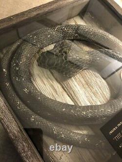 Original Indiana Jones Prop Snake From Magic Kingdom Great Movie Ride With LOA