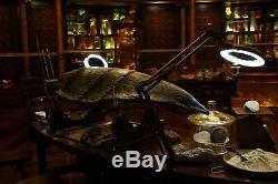 PACIFIC RIM Large Kaiju Jar (Hannibal Chau/Ron Perlman) ORIGINAL Movie PropABOU