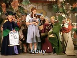The Wizard of Oz Movie Film Prop Memorabilia Collectible Hollywood Studios A1